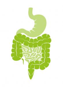 Disturbi intestinali e Alimentazione